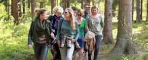 Deelnemers WandelCoaching lopen in het bos